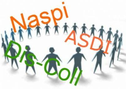 naspi-id17712